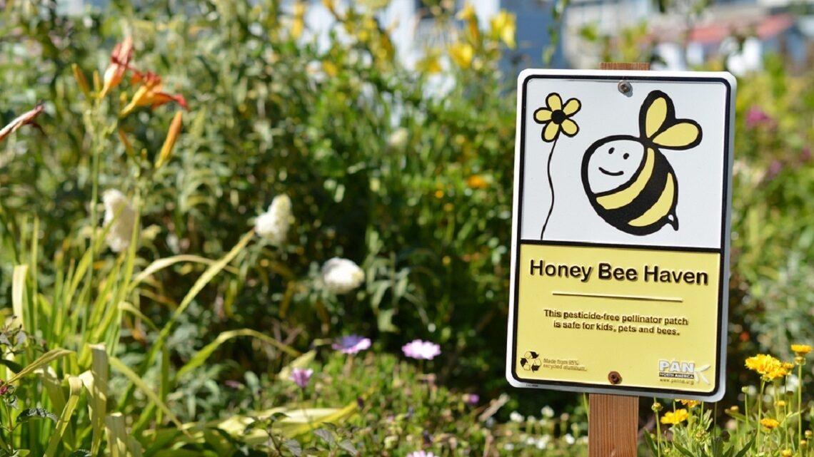 Honey Bee Haven Sign