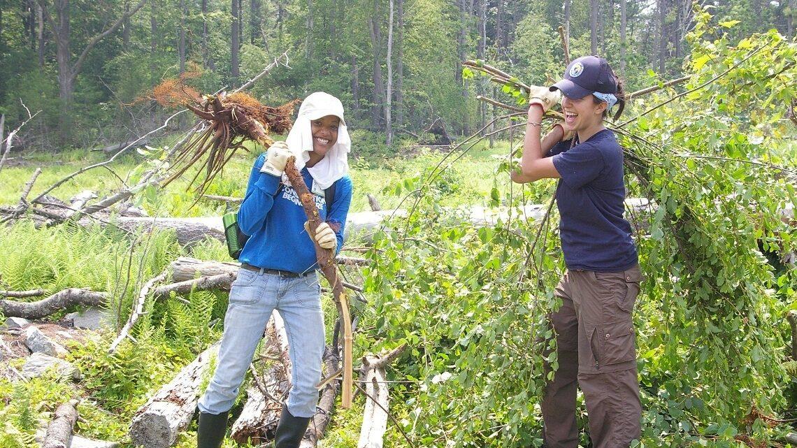 Volunteers cleaning up their woods