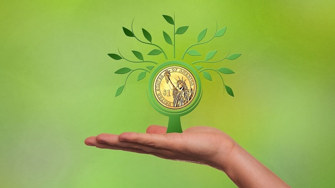 Tree with money as the center being held up by a hand