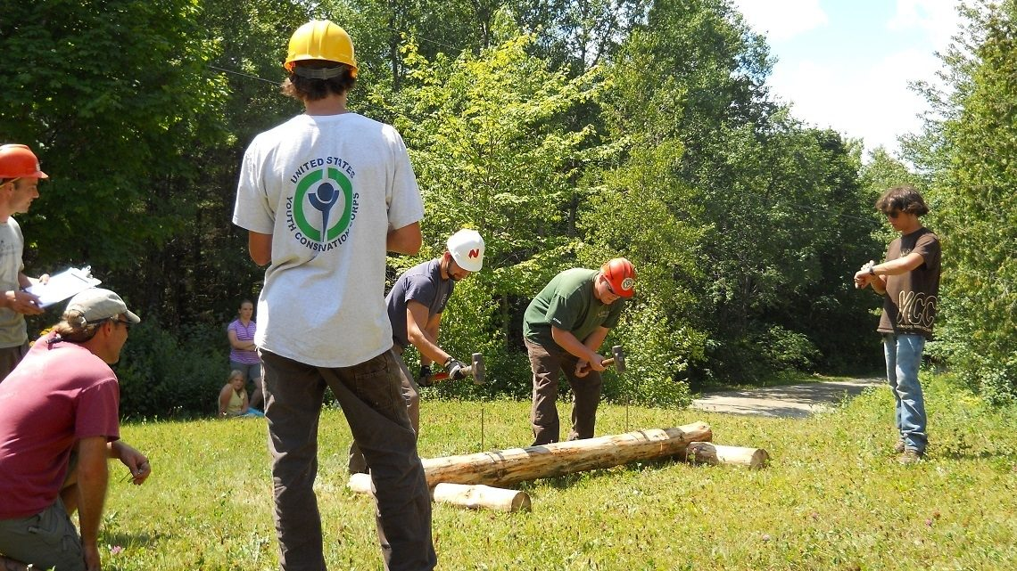 Volunteers hammering stakes into wooden object