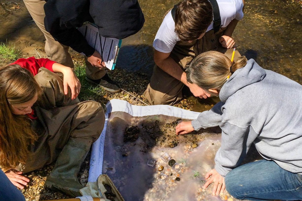 Students from Queen Anne's County High School in Centreville, Md., look for macroinvertebrates in a stream during an environmental education activity. (Photo courtesy of Suzanne Sullivan/ShoreRivers)